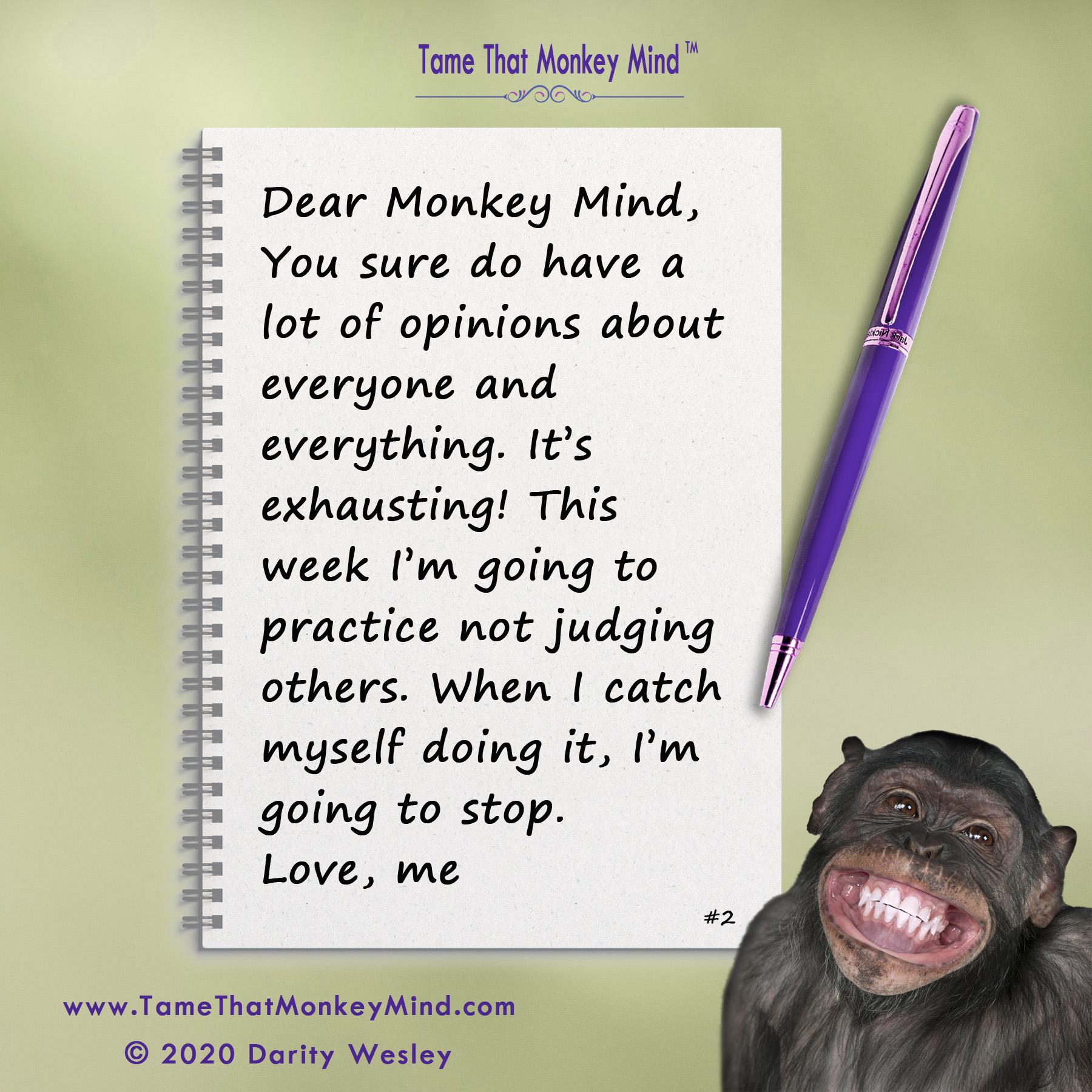 Dear Monkey Mind #2