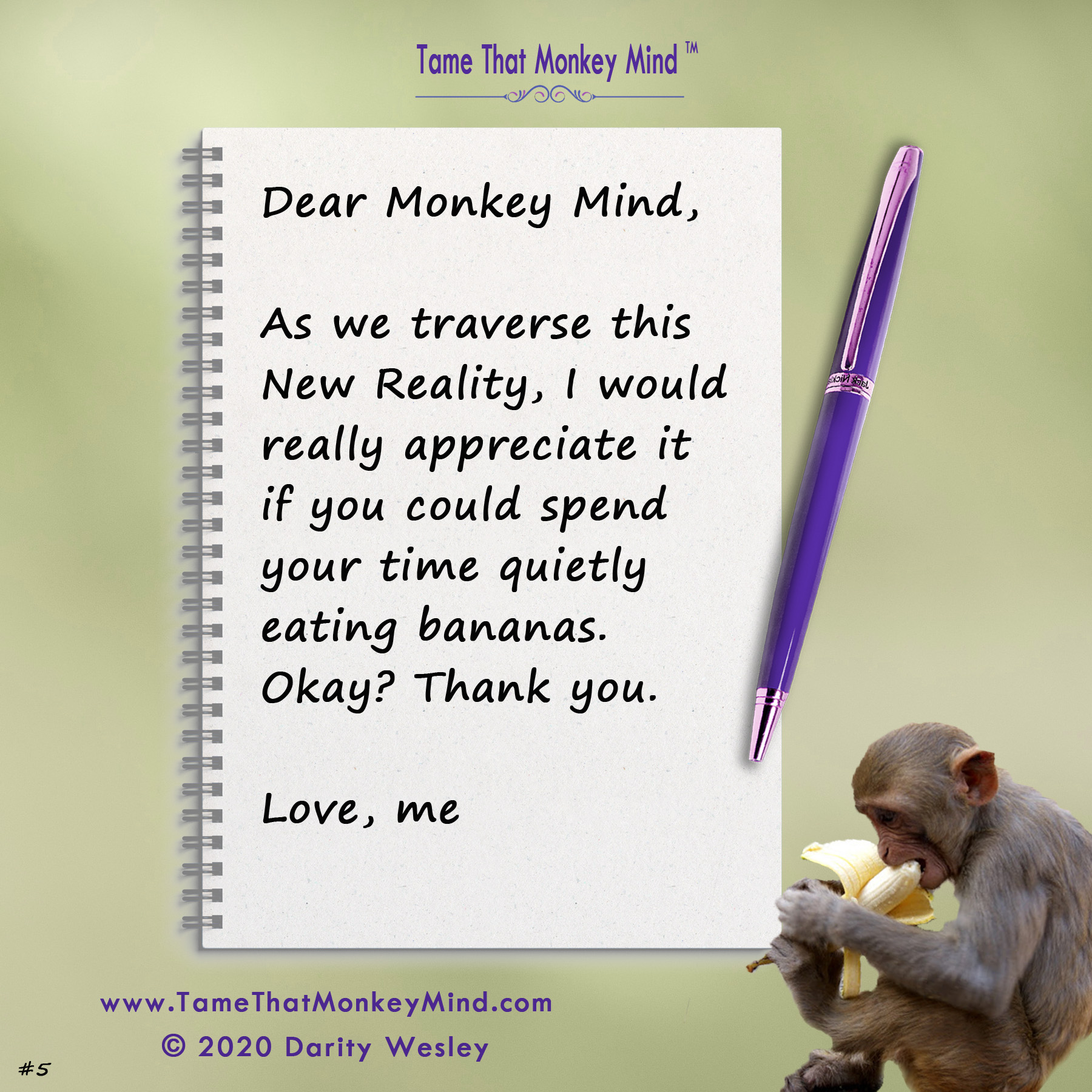 Dear Monkey Mind #5