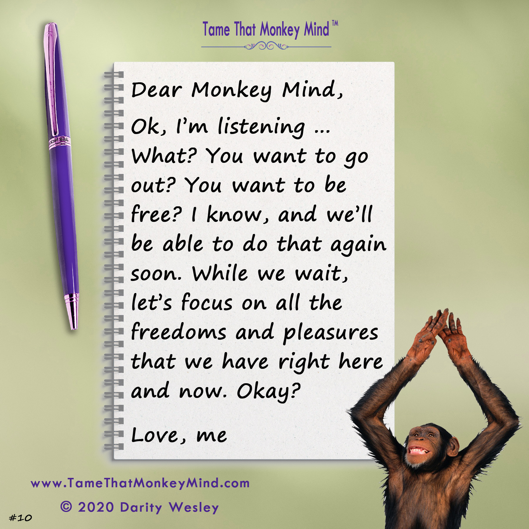 Dear Monkey Mind #10