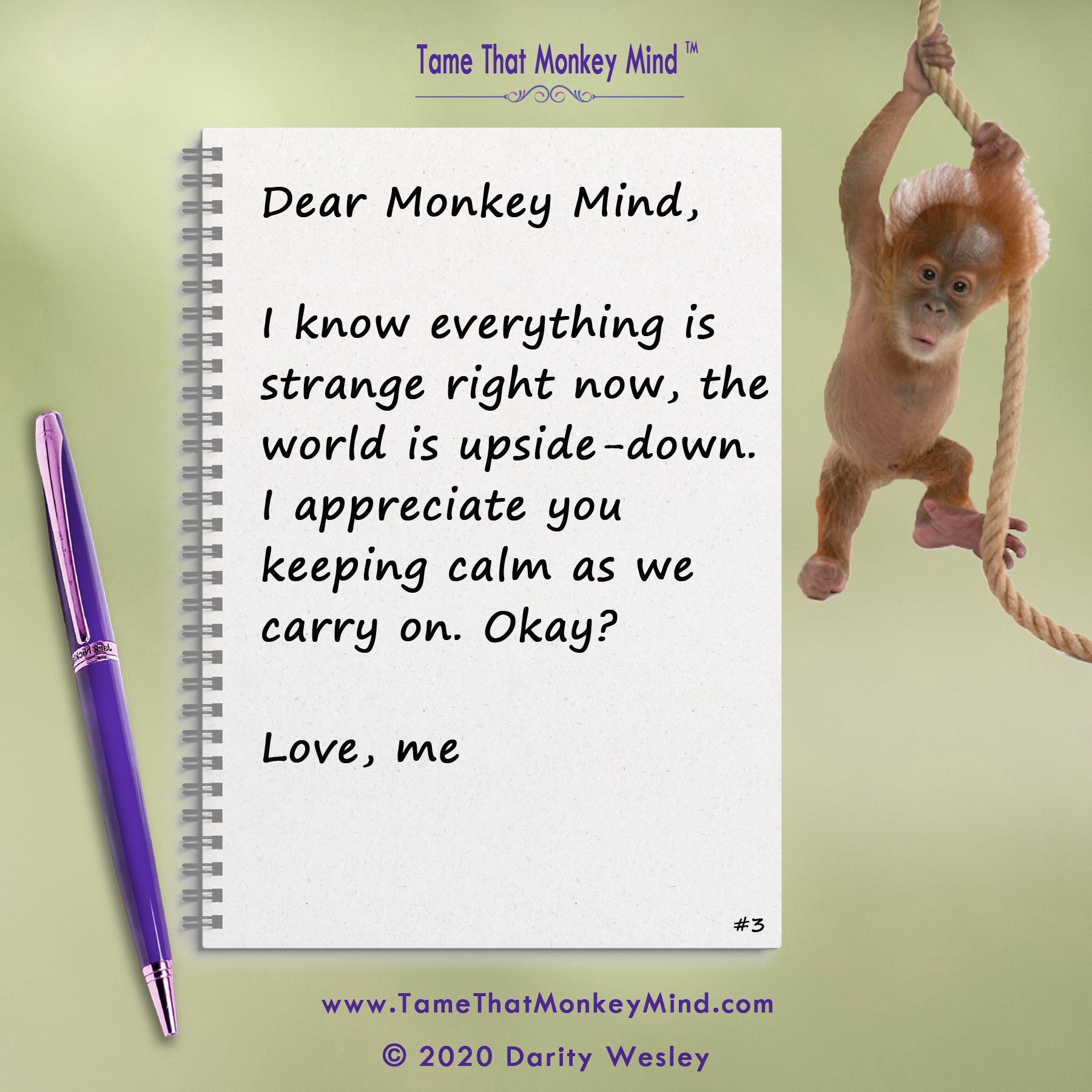 Dear Monkey Mind #3