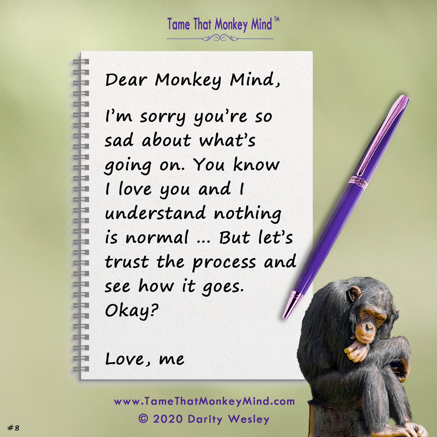 Dear Monkey Mind #4