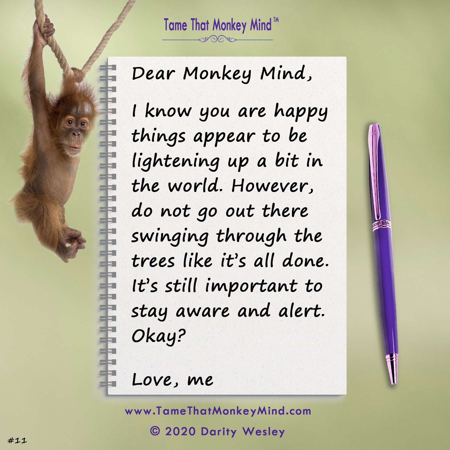 Dear Monkey Mind #11