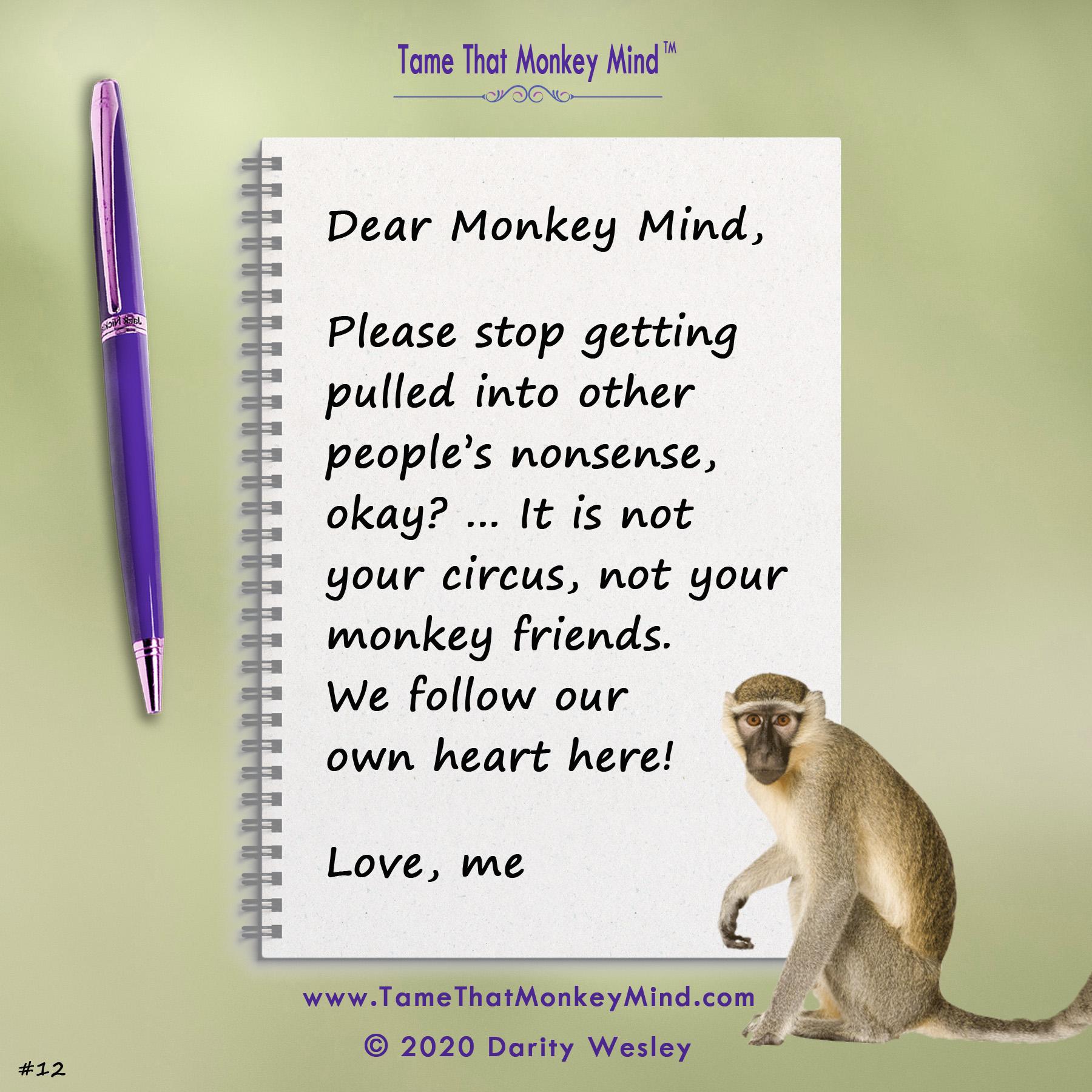 Dear Monkey Mind #12