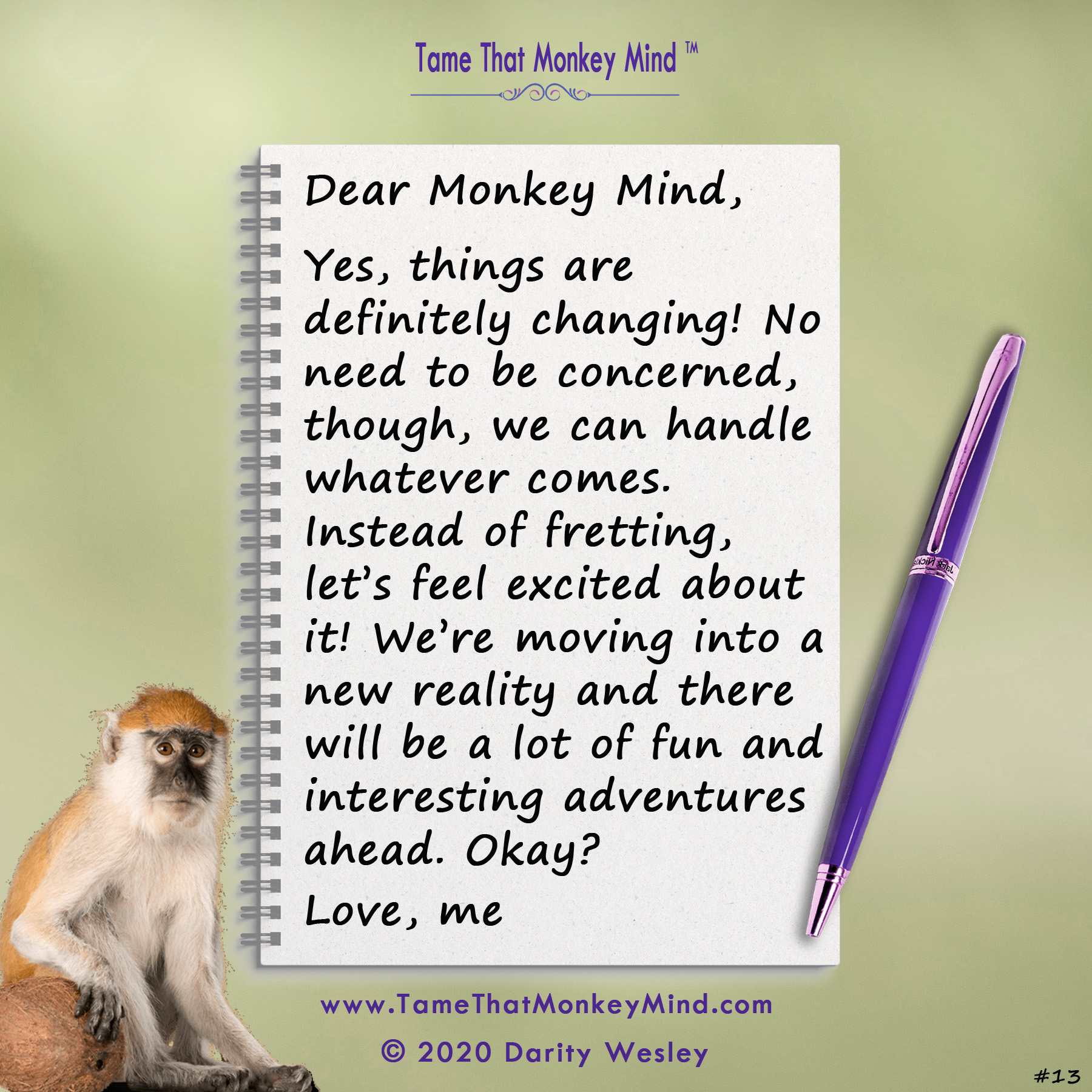Dear Monkey Mind #13