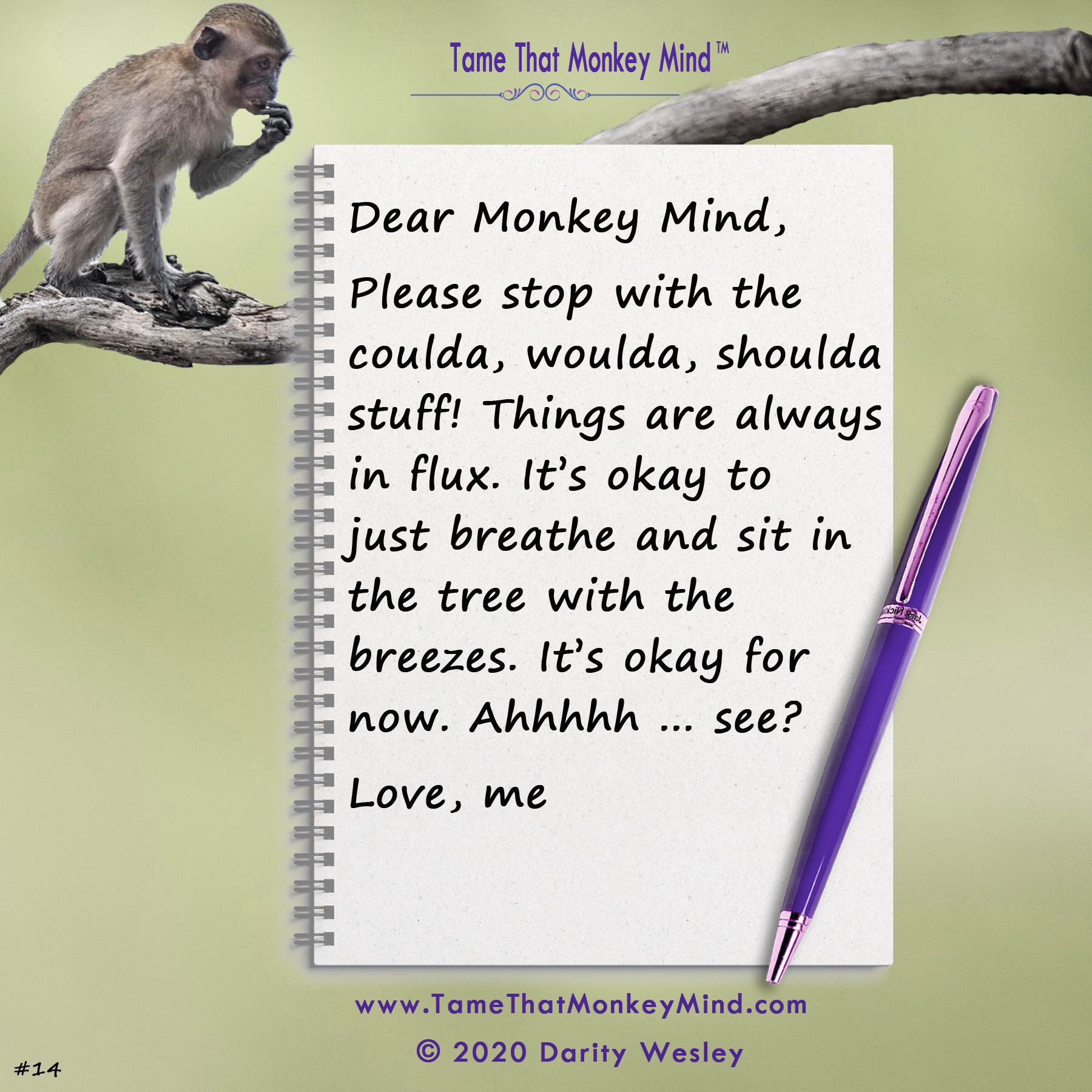 Dear Monkey Mind #14