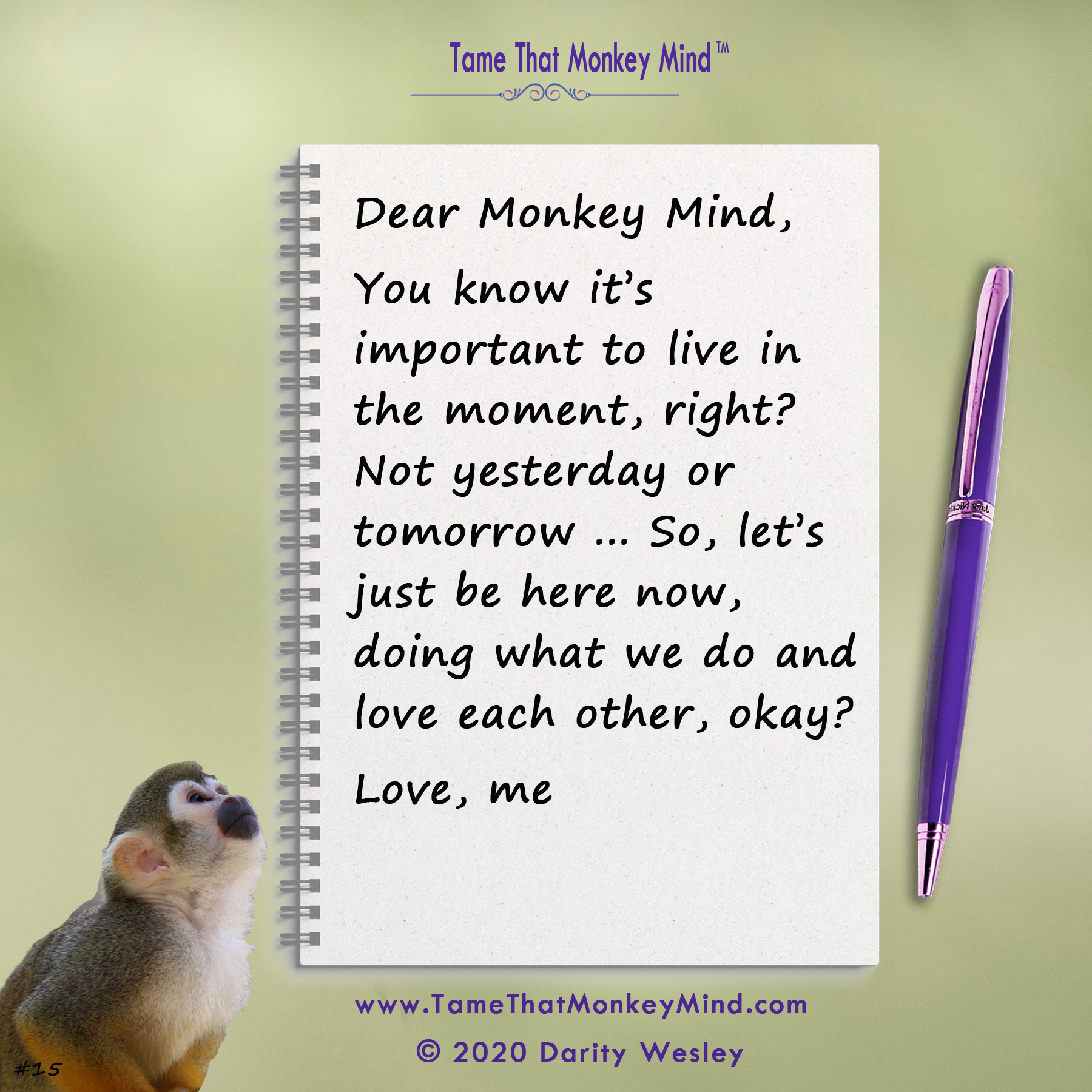Dear Monkey Mind #15
