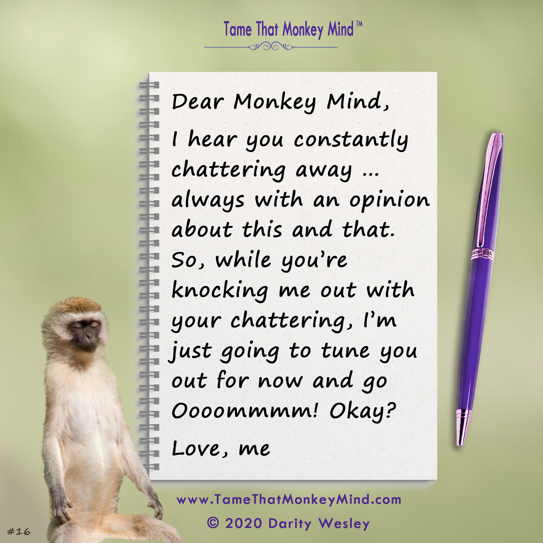 Dear Monkey Mind #16