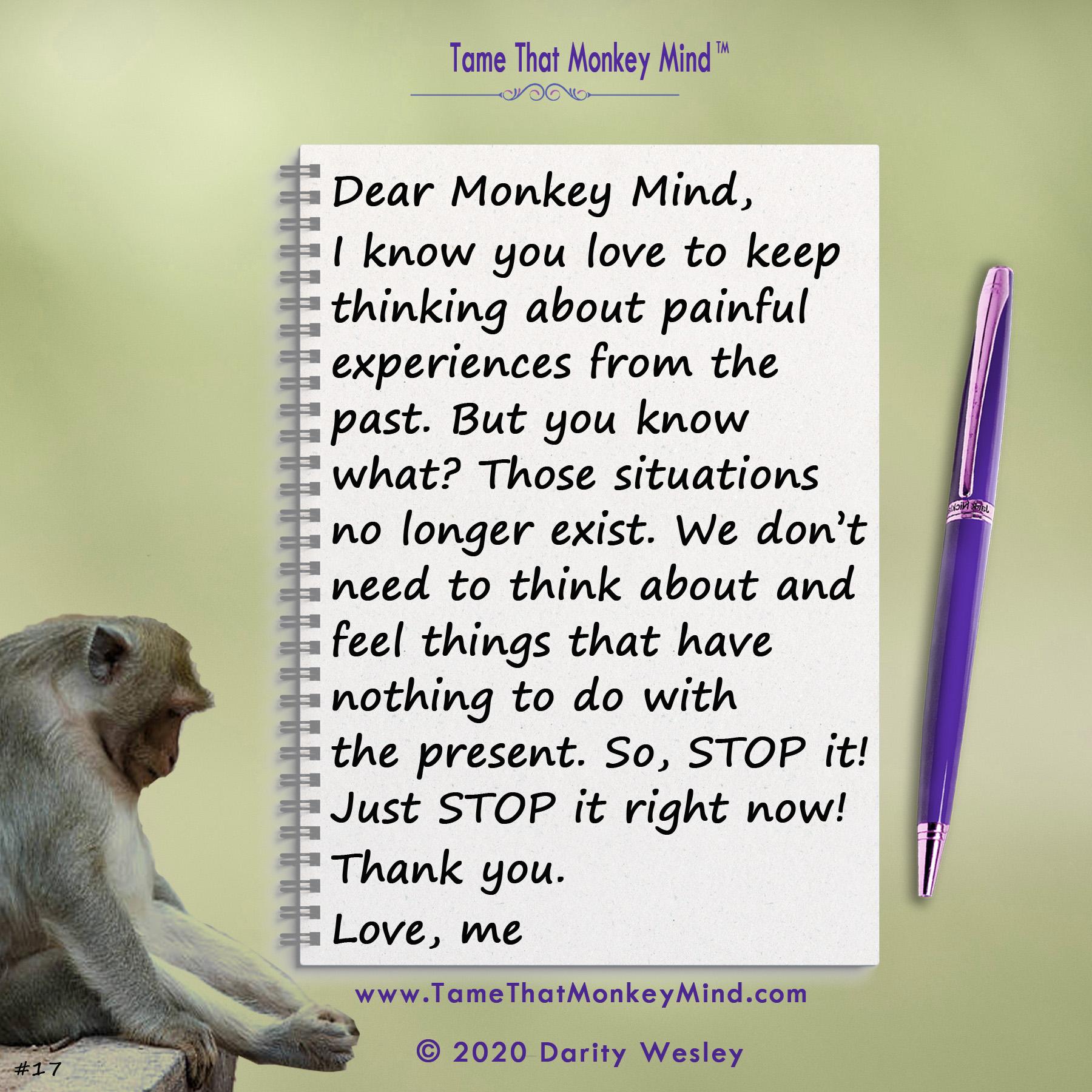 Dear Monkey Mind #17