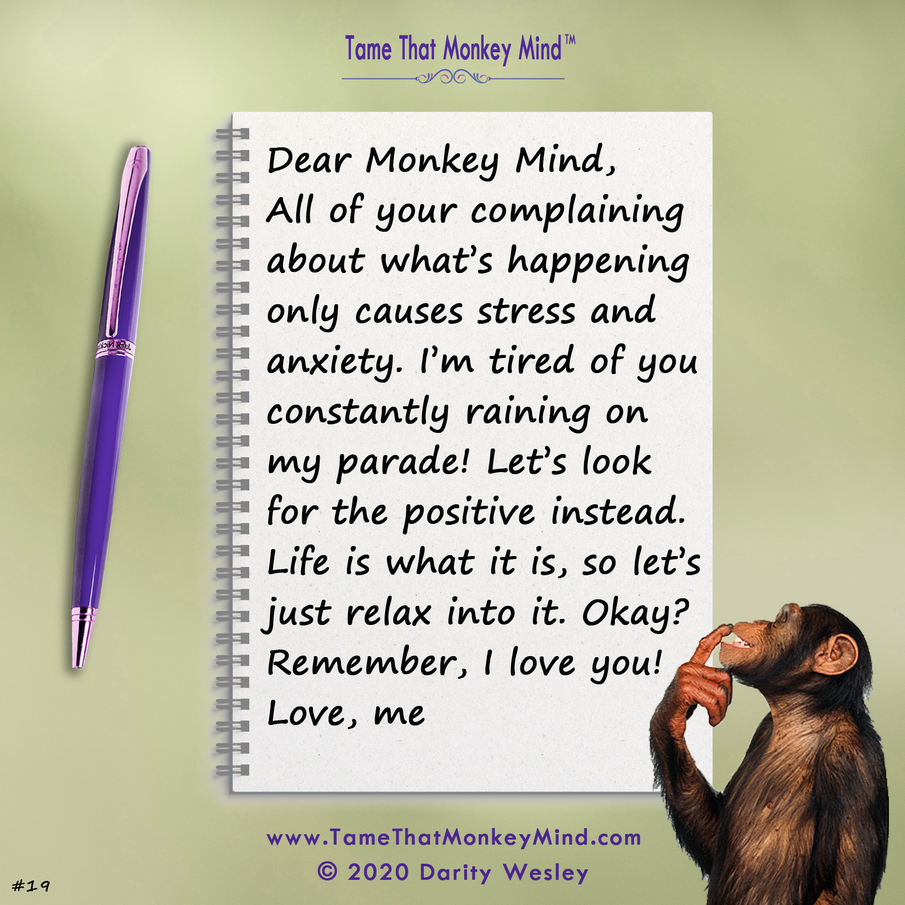 Dear Monkey Mind #19