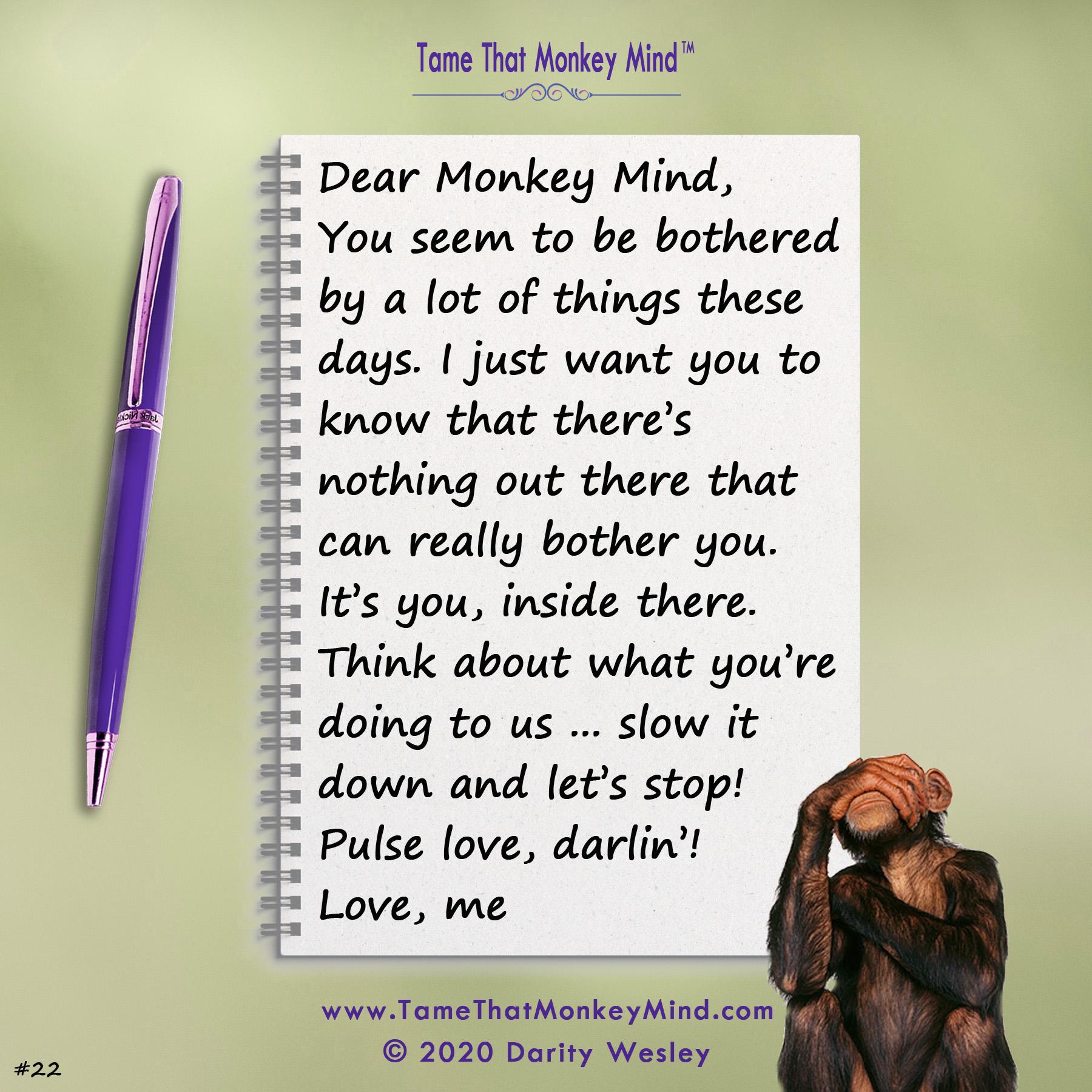 Dear Monkey Mind #22