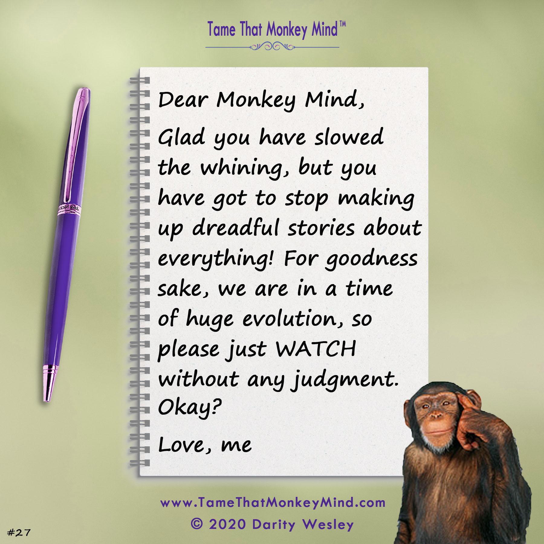 Dear Monkey Mind #27