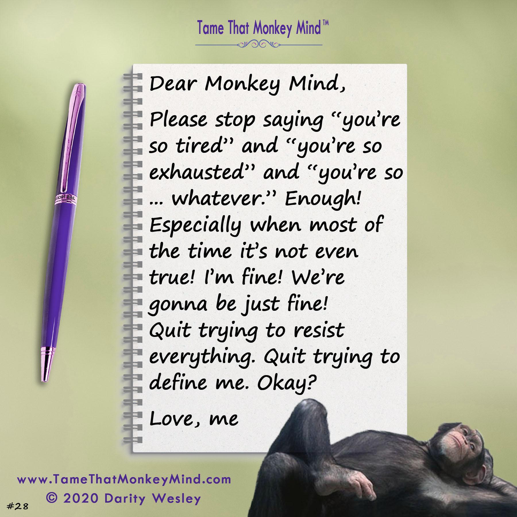 Dear Monkey Mind #28