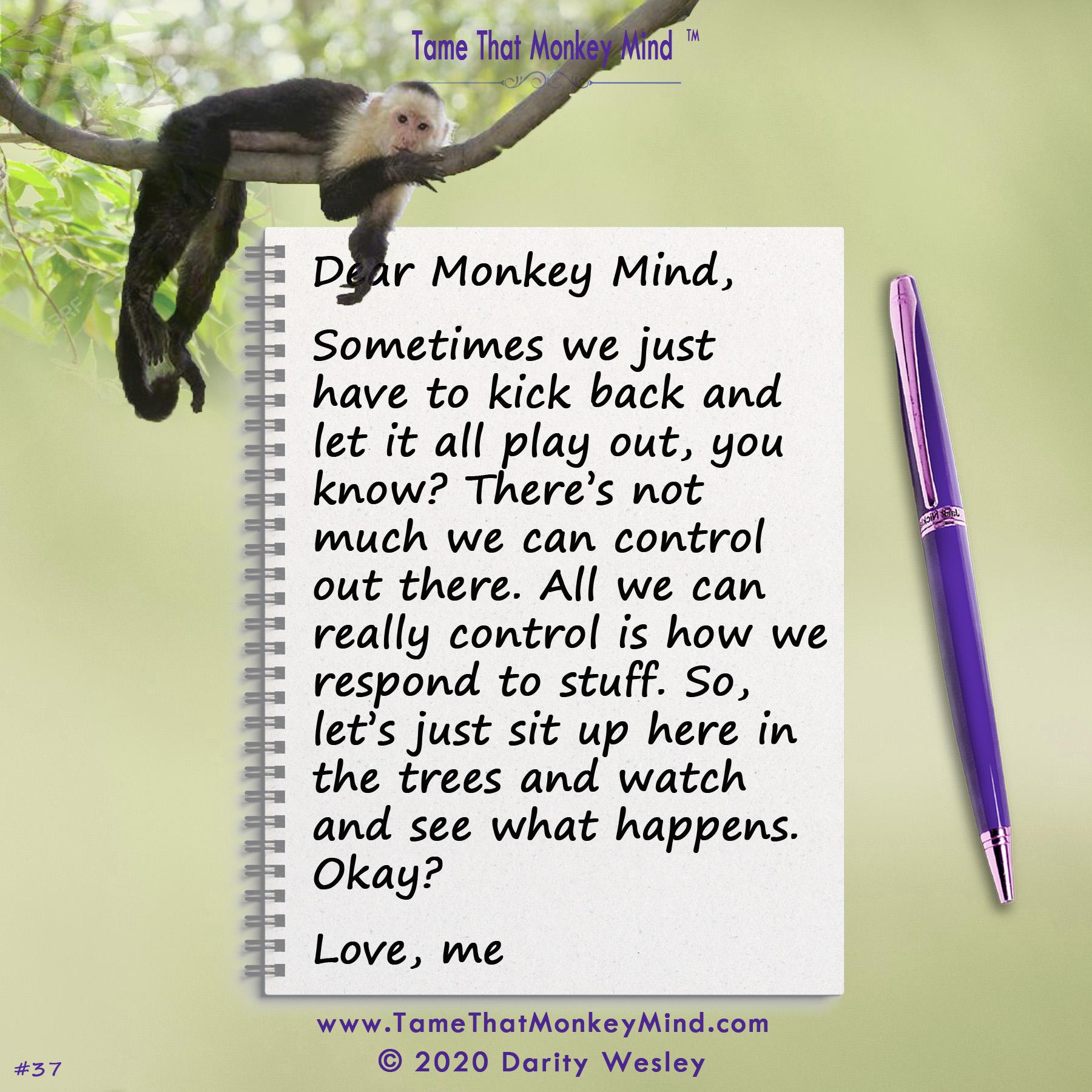Dear Monkey Mind #37