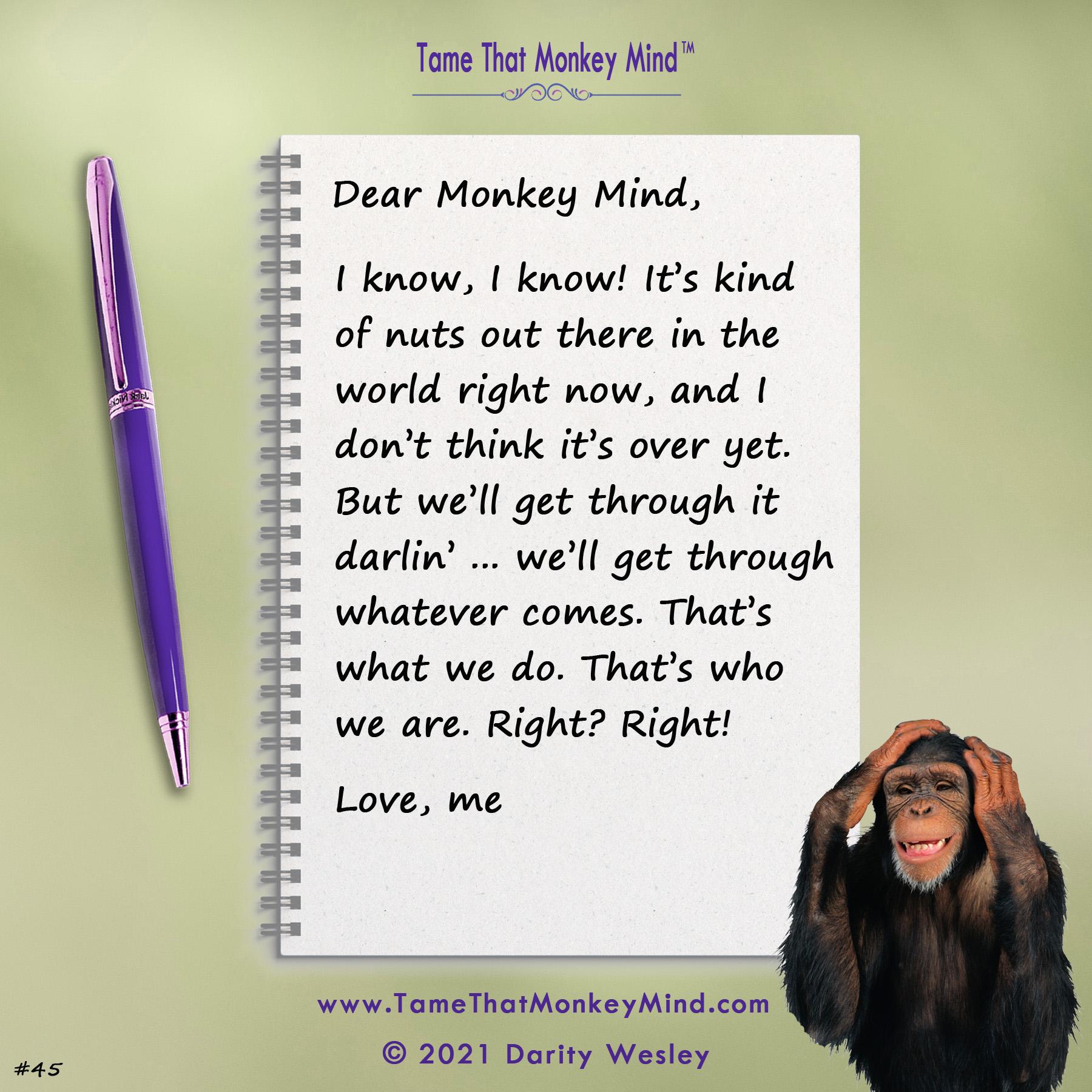 Dear Monkey Mind #45