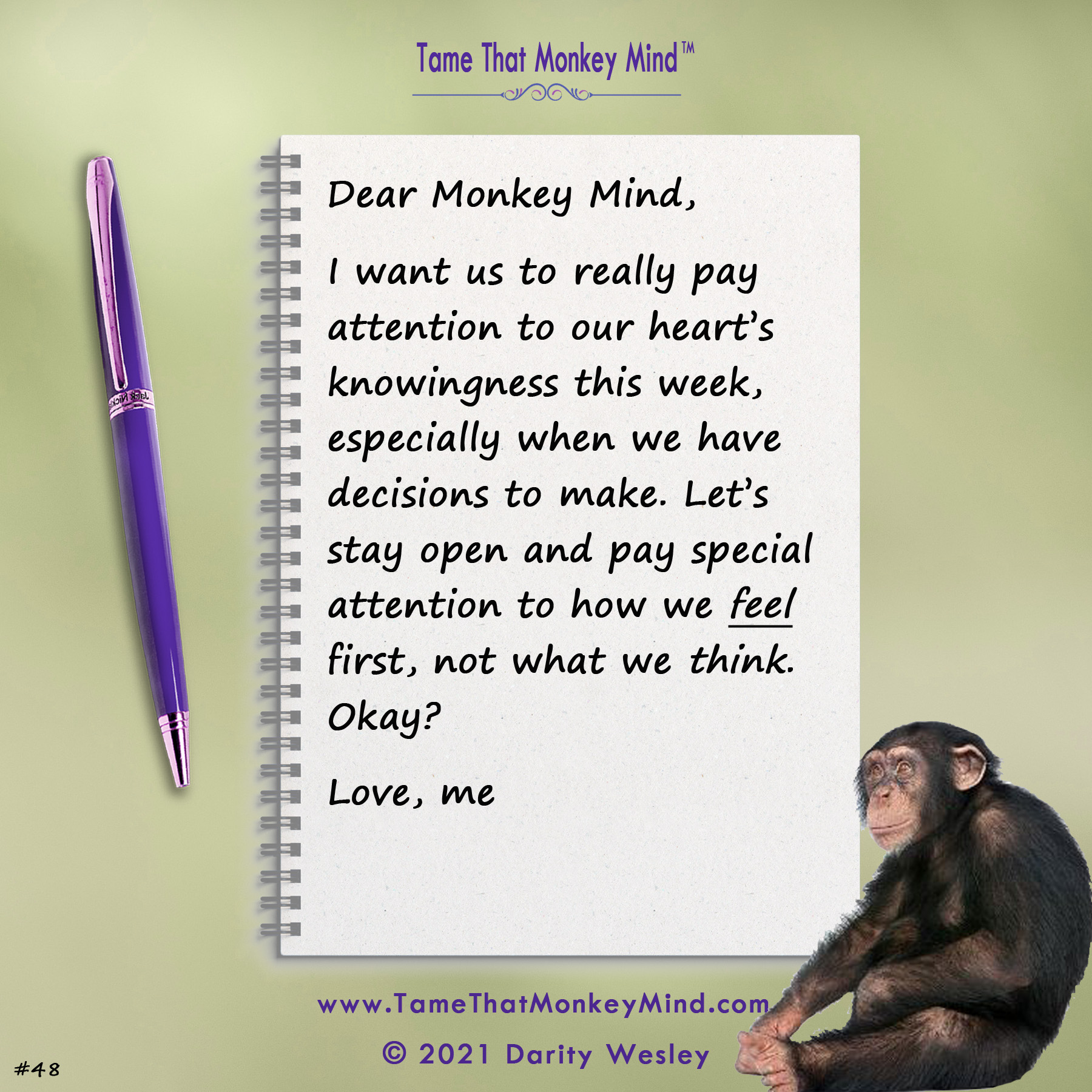 Dear Monkey Mind #48