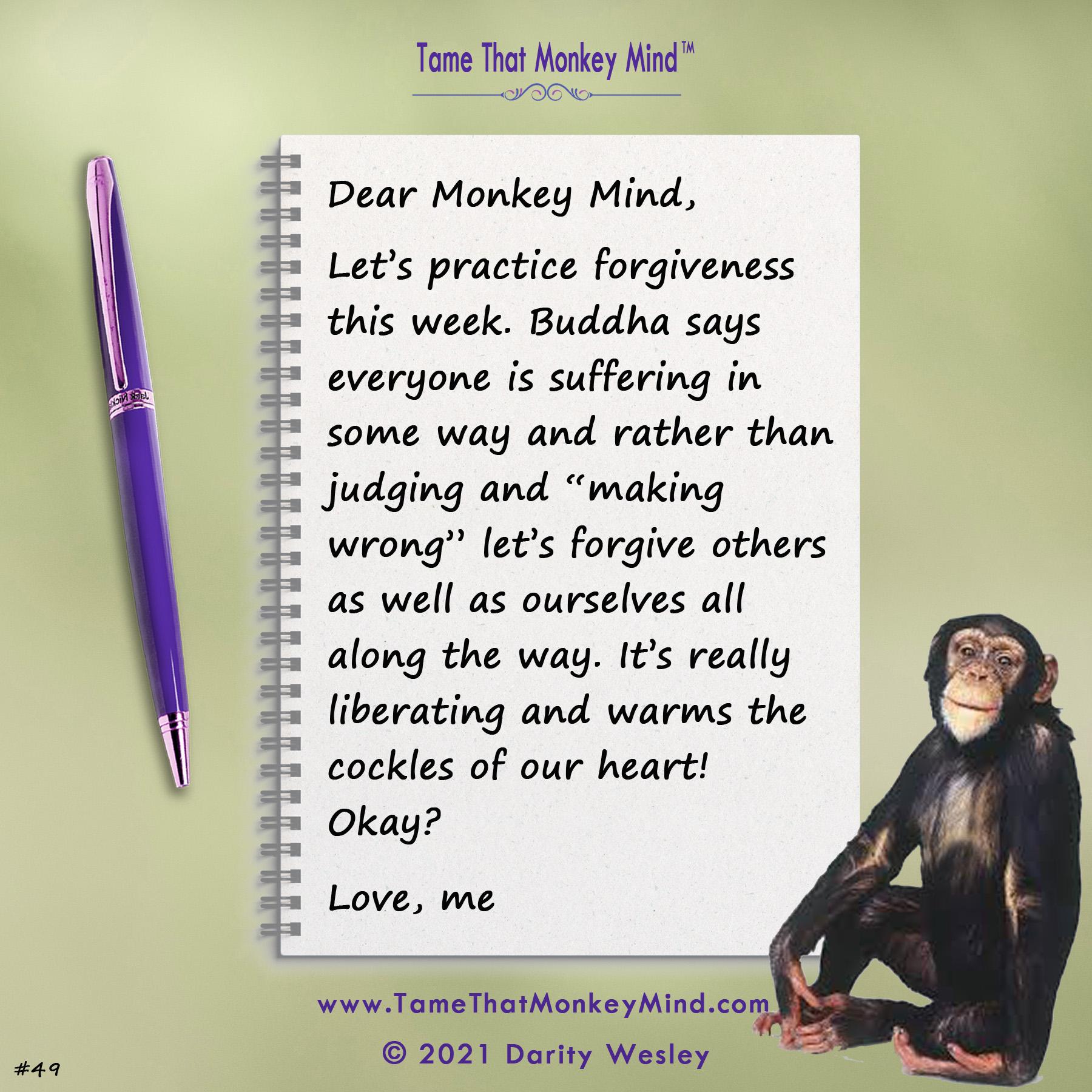 Dear Monkey Mind #49