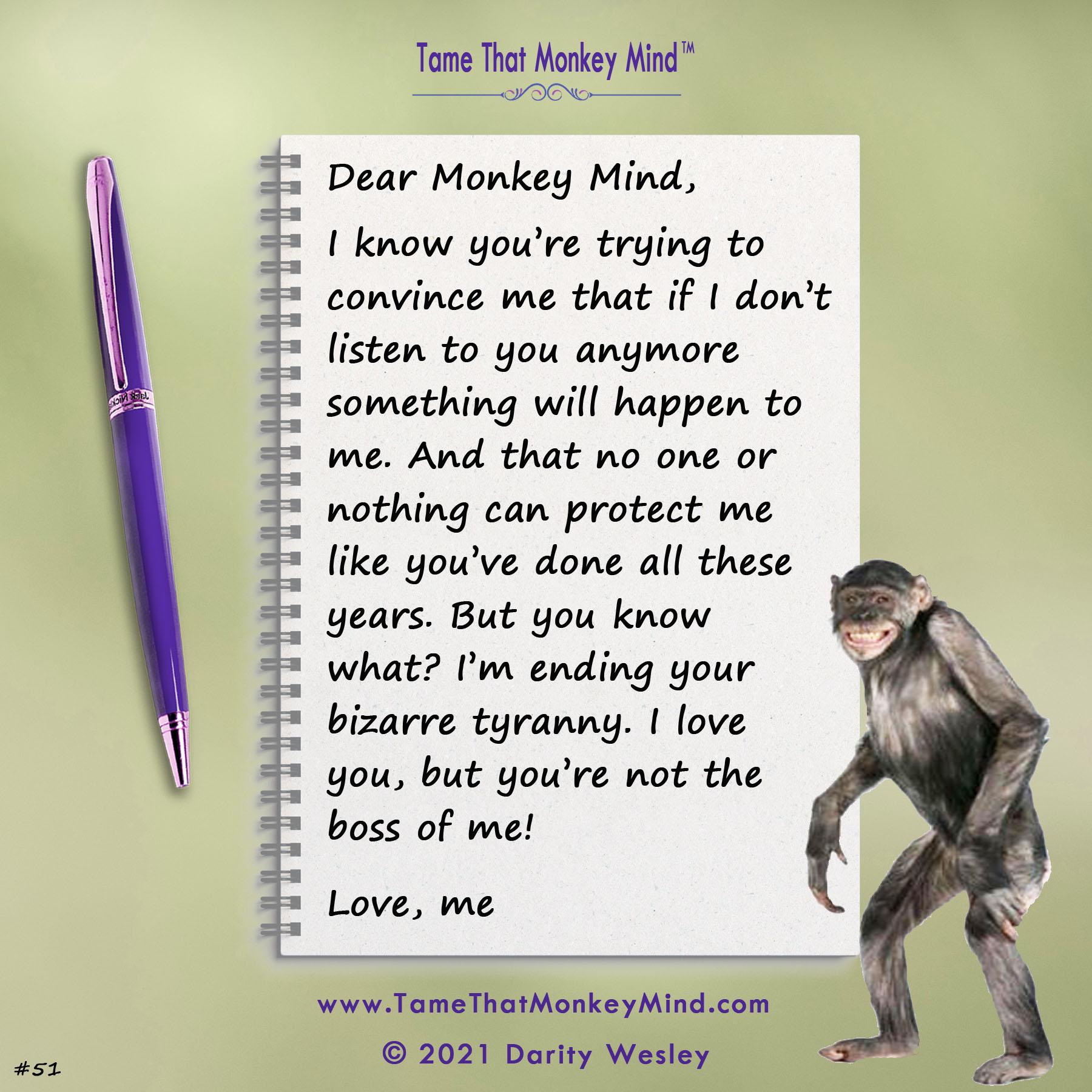 Dear Monkey Mind #51